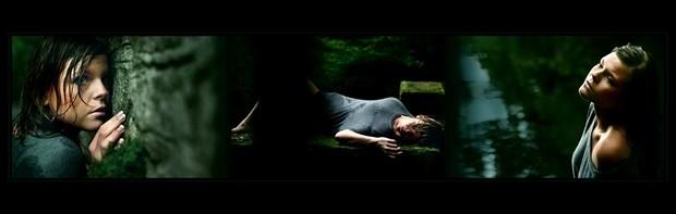 [dark wooden stories] Nature Photo by Photographer Laila Pregizer